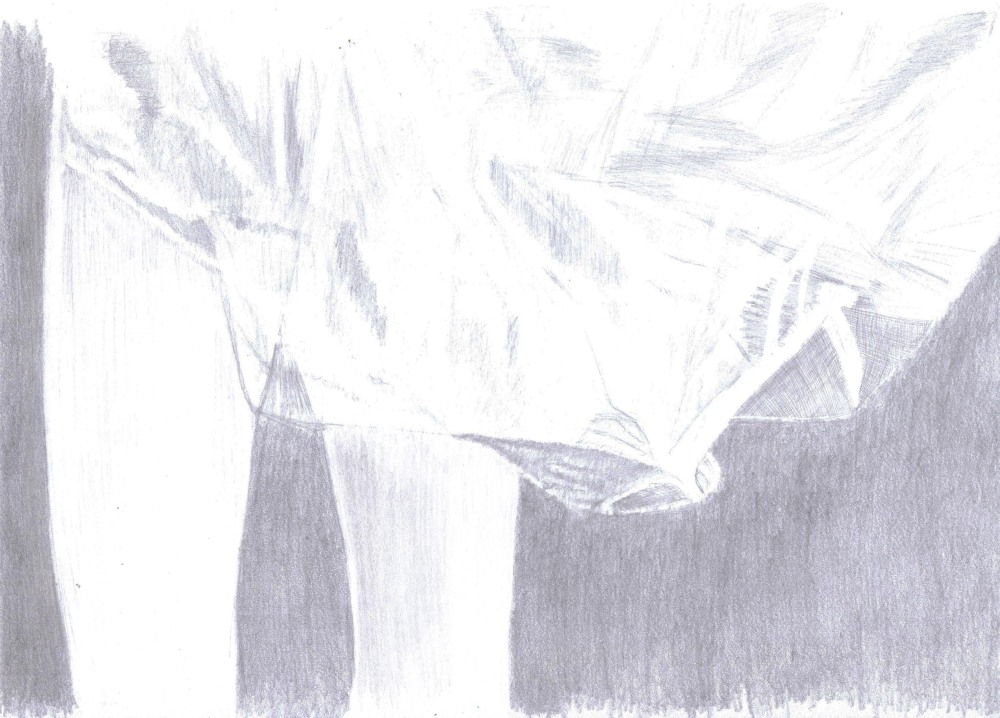 16 august tulle drawing