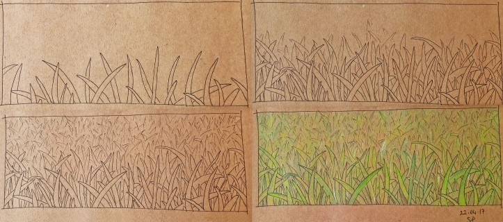 grass drawing steps