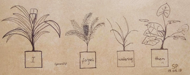i forget watering plants plant drawing