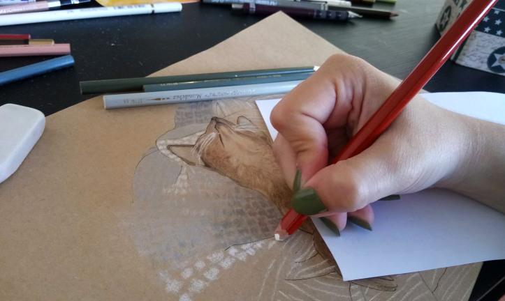 sleeping cat drawing process