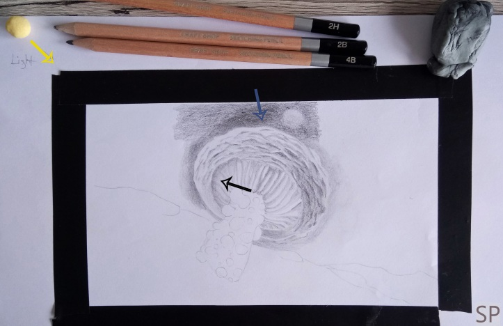 mushroom drawing step 4.jpg
