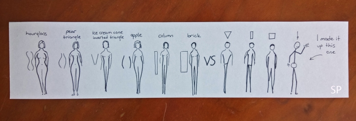 male and female body types 2.jpg