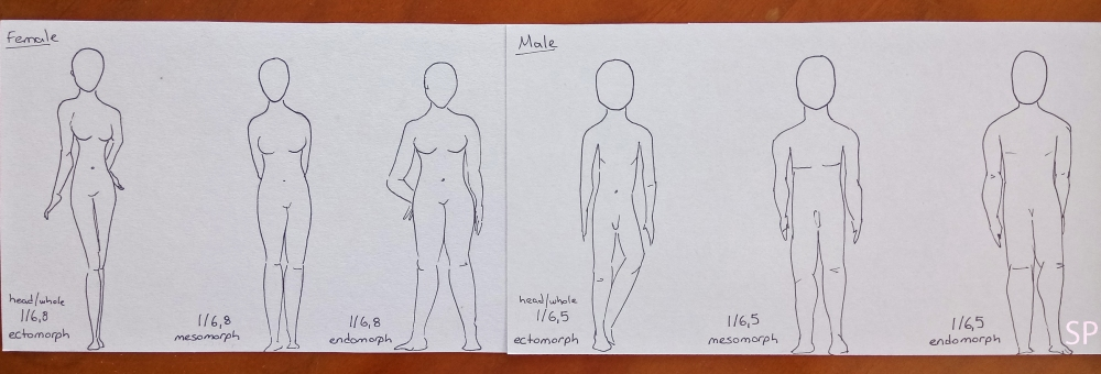 male and female ectomorph mesomorph endomorph