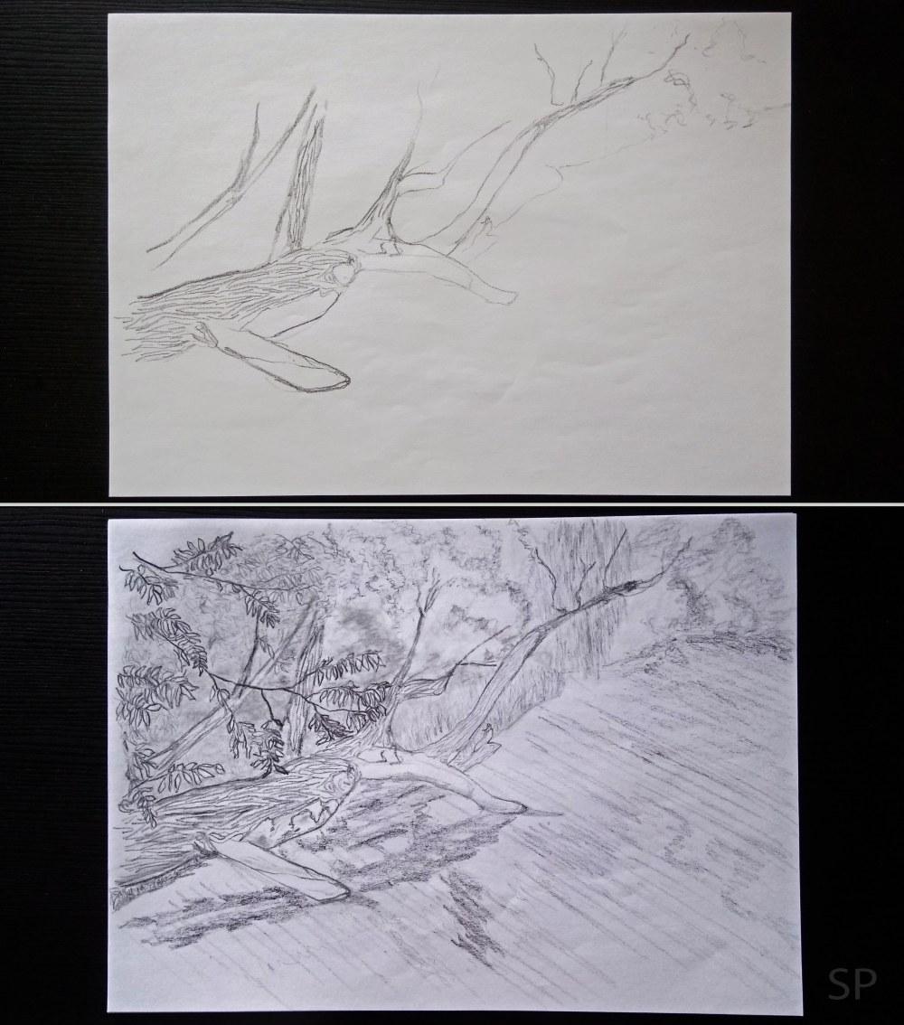 nature composition 2