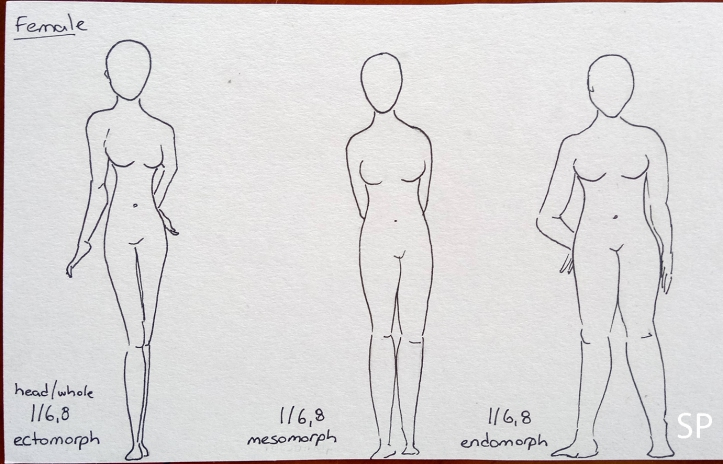 woman ectomorph mesomorph endomorph