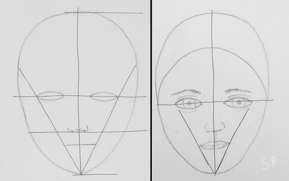 face proportions2