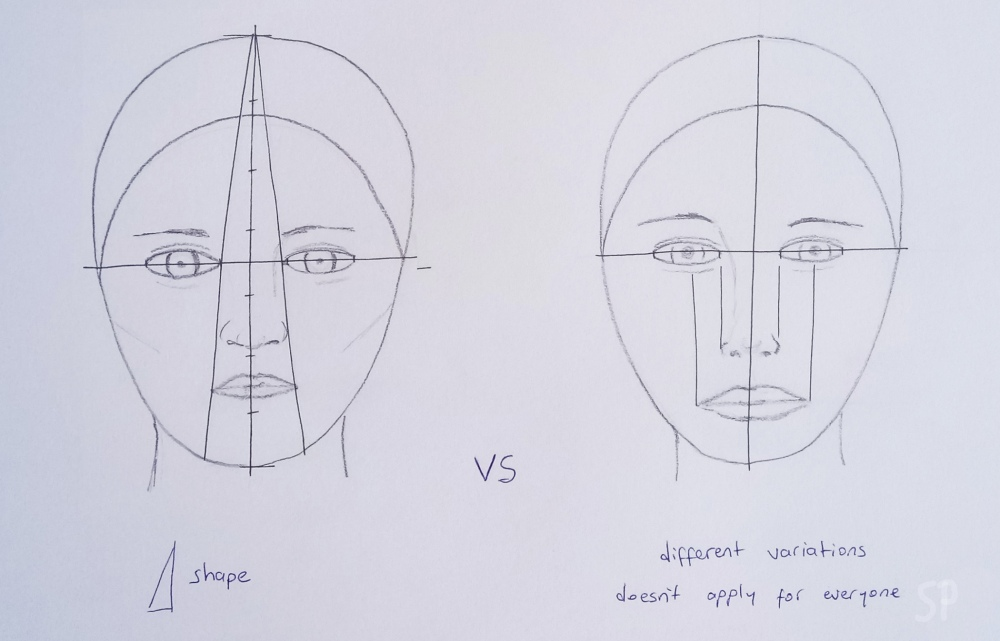 face proportions3
