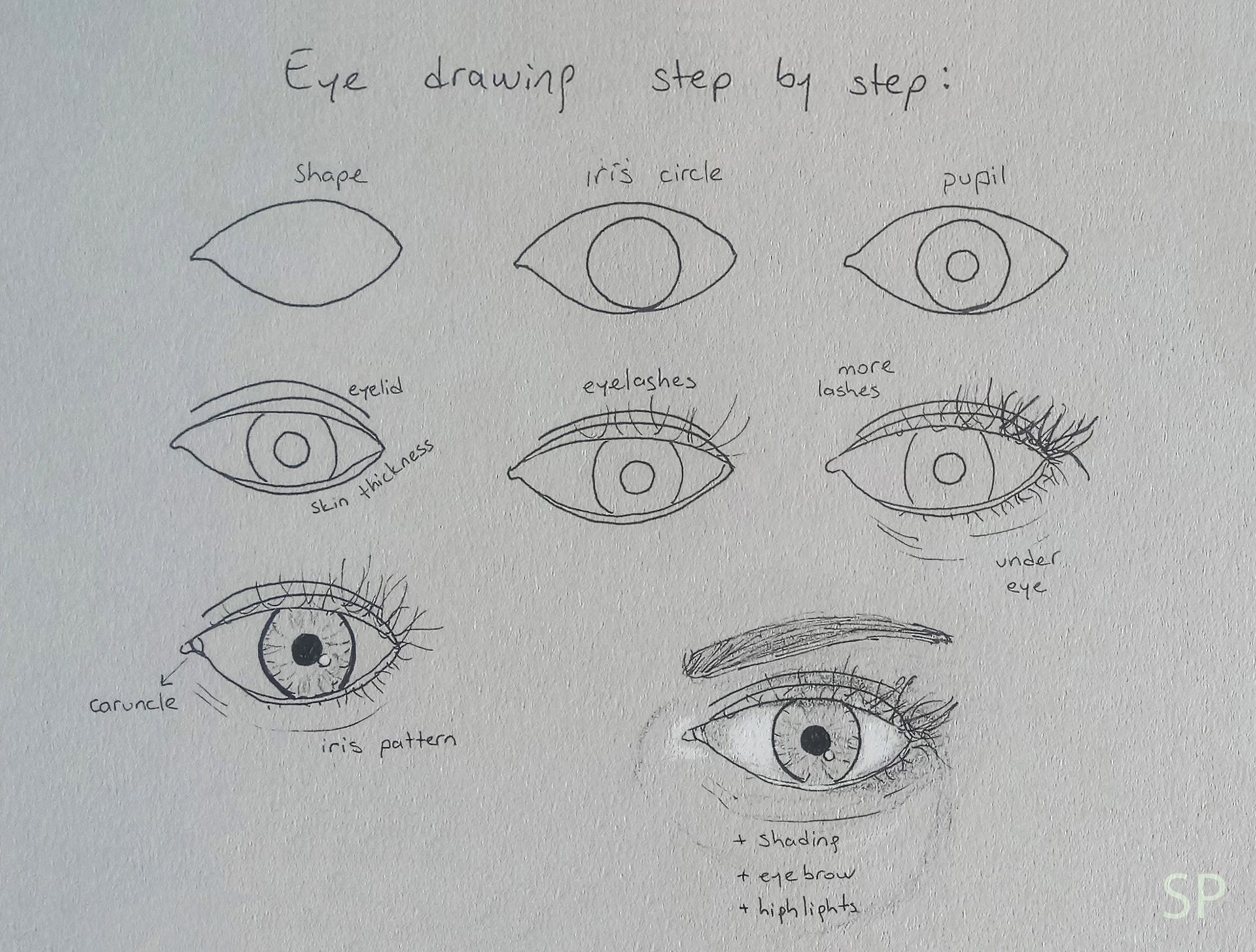 Line Drawing Step By Step : Drawing eye u stretched paw