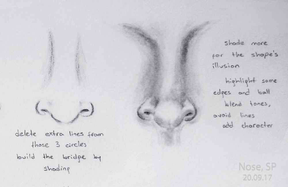 nose drawing steps 5