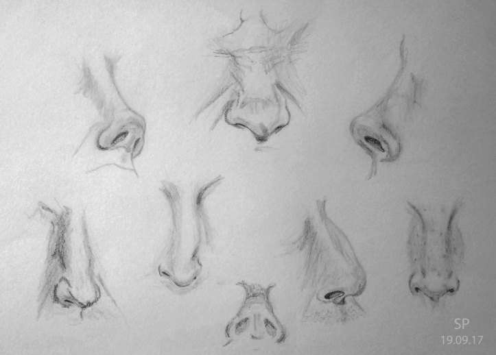 nose drawings 2
