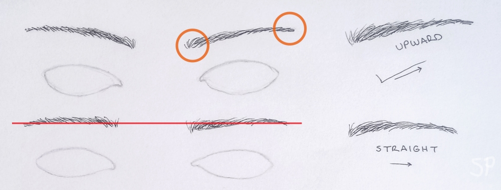 upward and straight eyebrow drawings