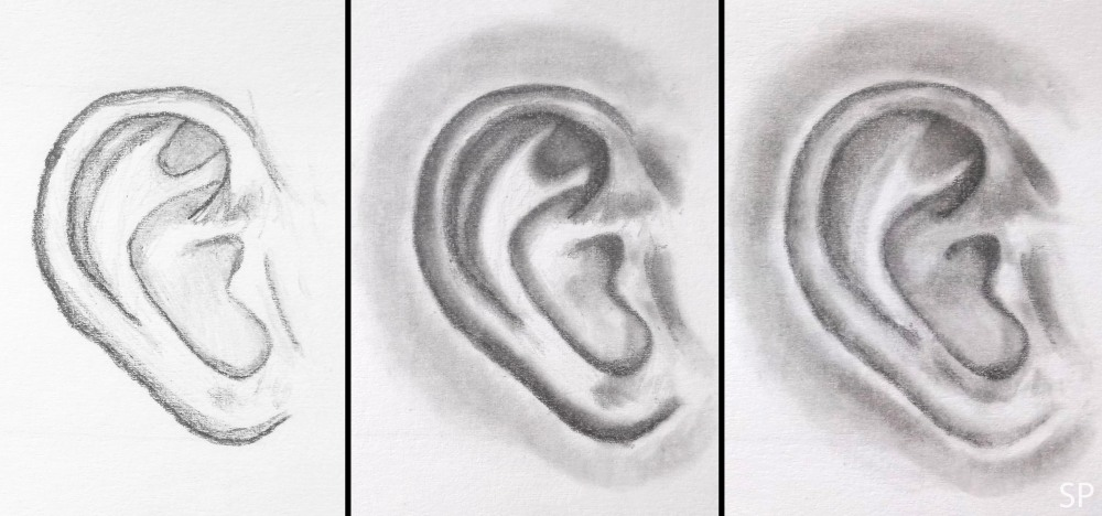 ear shading steps