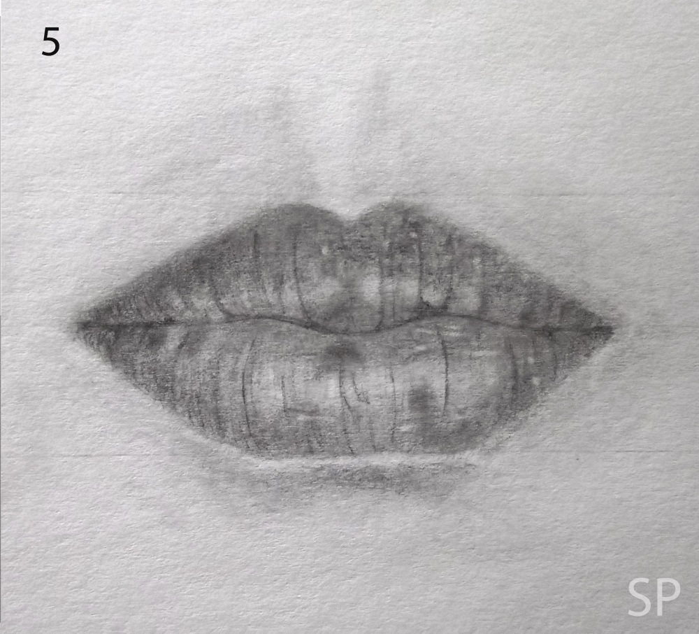 lip front drawing steps 3