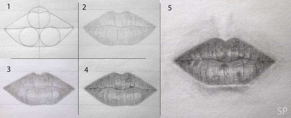 lip front drawing steps