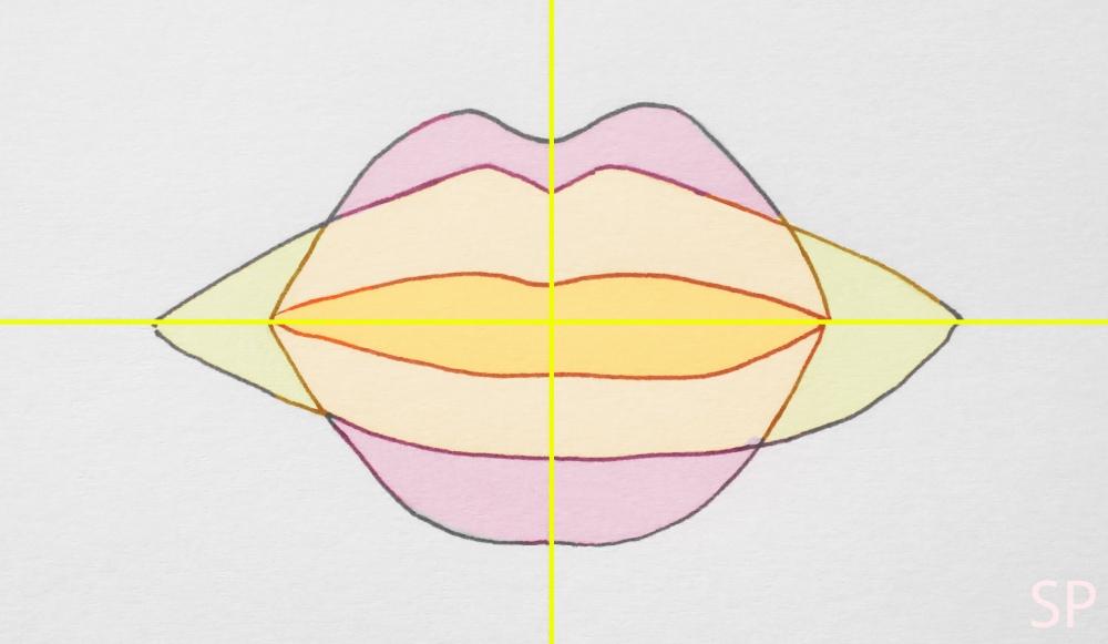 lip shapes.jpg