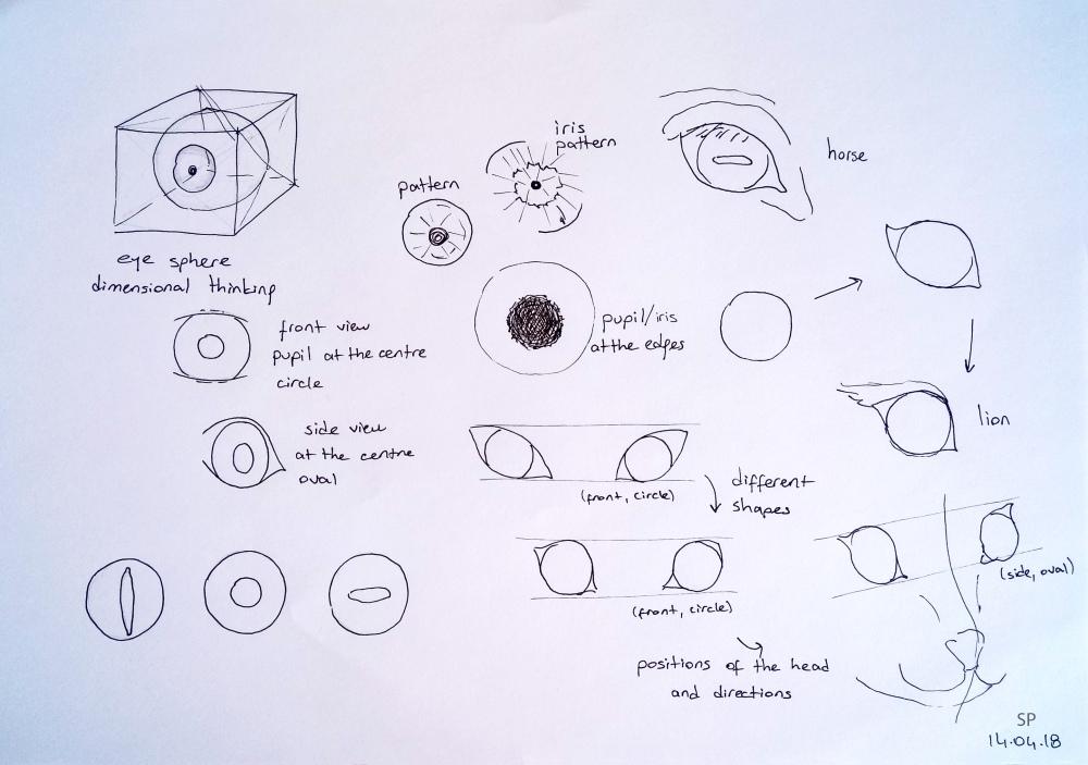 animal eye drawing tips