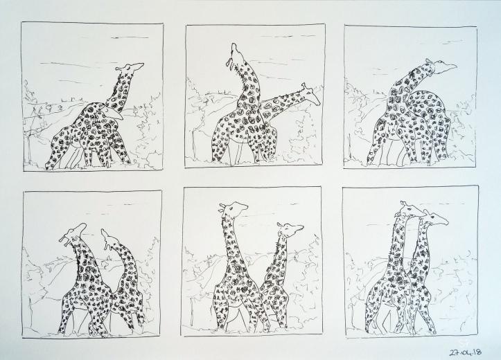 giraffe fight drawing