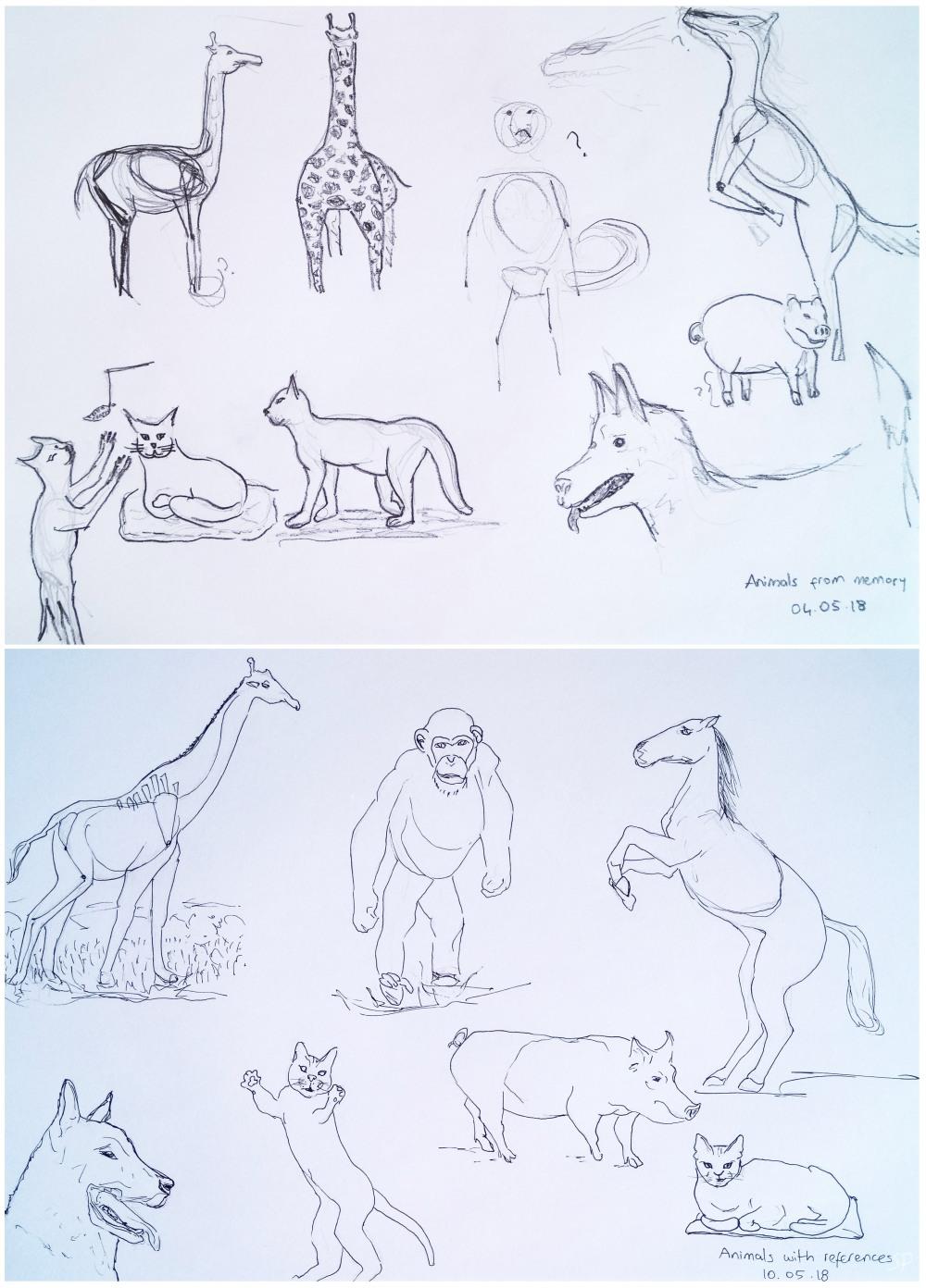 animal drawings memory vs reference