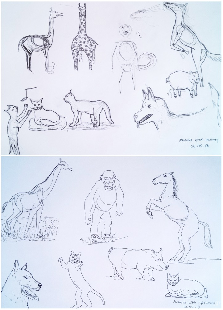 animal drawings memory vs reference
