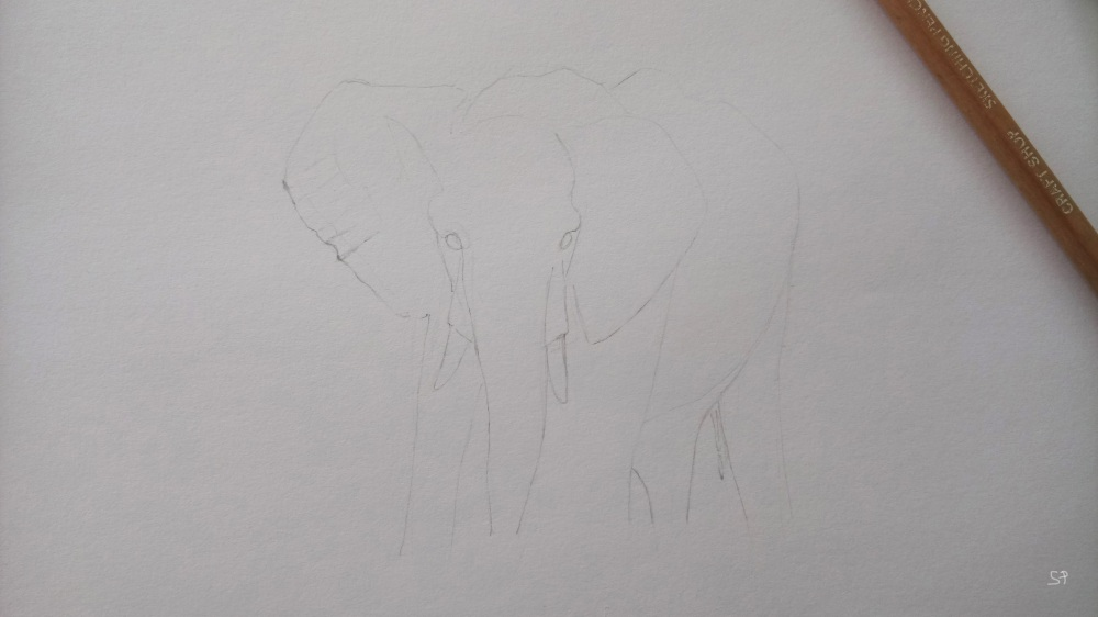 elephant drawing steps 1 proportions