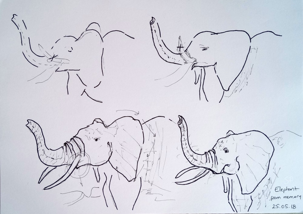 elephant from memory