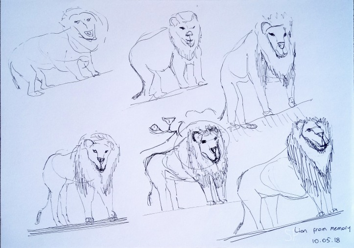 lion drawing from memory