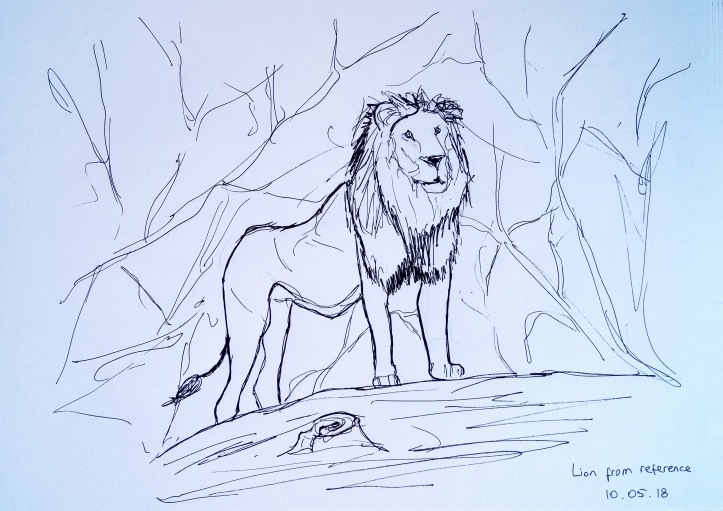 lion drawing from reference