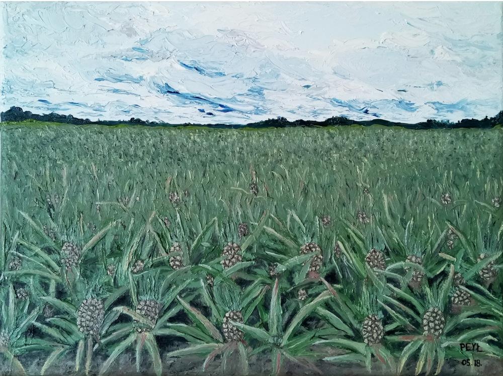 pineapple field oil painting.jpg