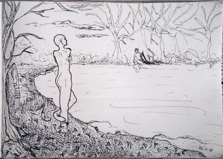 narcissus sketch ink