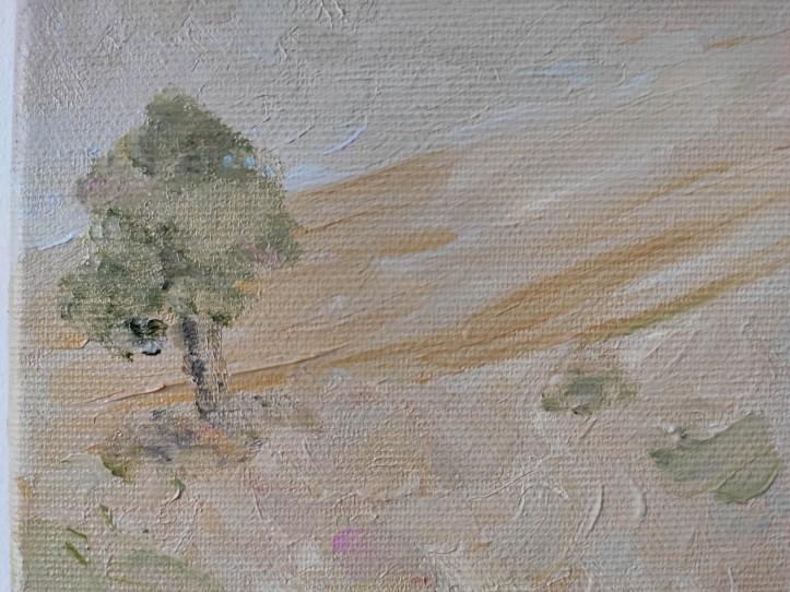 dryland background tree closeup