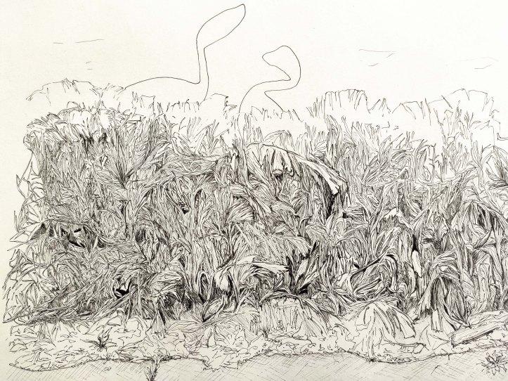 ink detail 2