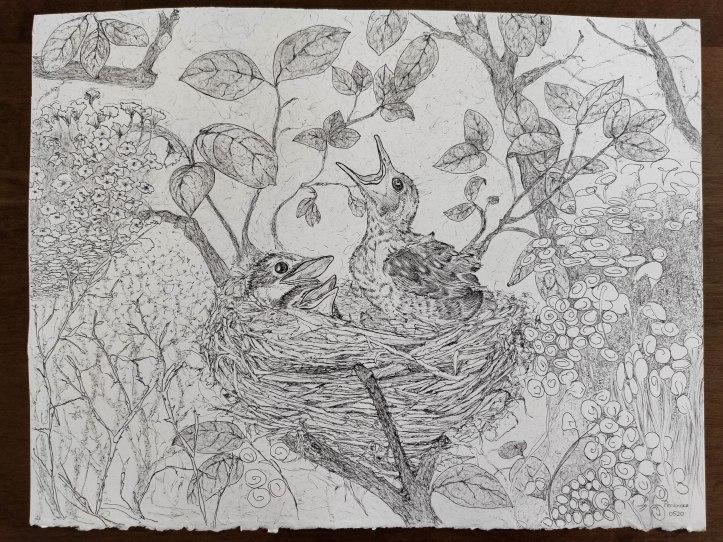 bird nest fine line ink drawing