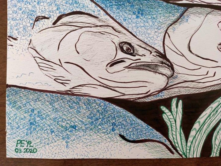 fish brown ink closeup1