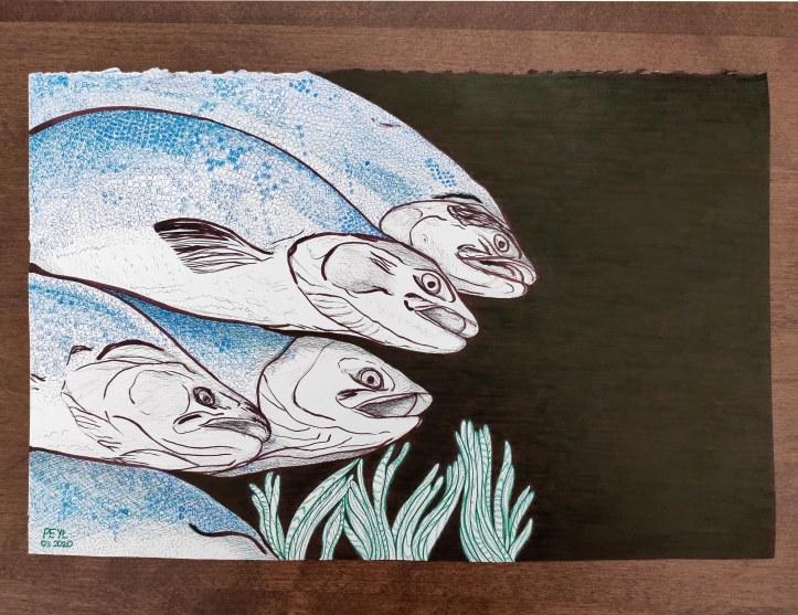 fish brown ink drawing